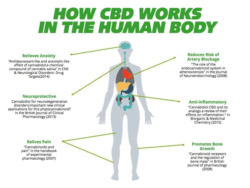 Cbd Tolerance, What Is It?